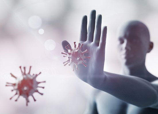 Wie funktioniert unser Immunsystem?