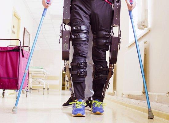 Was weißt du über Exoskelette?