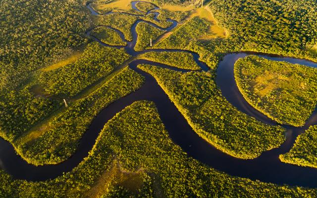 Der Amazonas-Regenwald: wunderschön, aber leider auch in Gefahr.