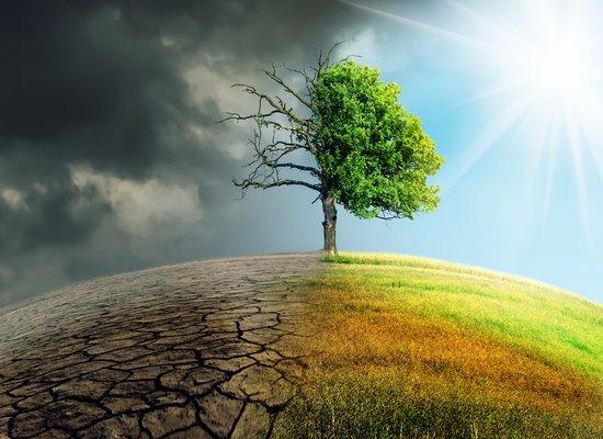 Wundersame Welt: Klimawandel